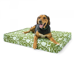 5 Best Orthopedic Dog Bed – The optimal comfort for your best friend