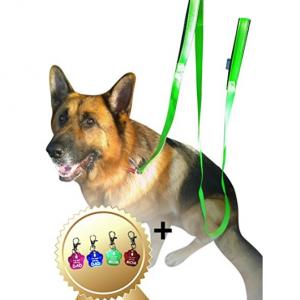 Sturdy Dog Leash