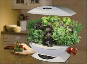 5 Best AeroGarden Indoor Garden – Enjoy fresh greens at every meal no matter what the season